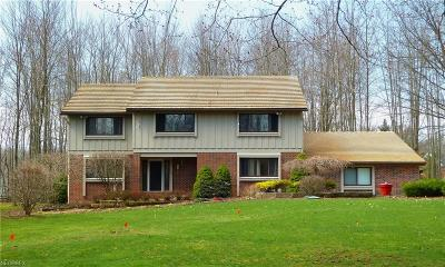 Geauga County Single Family Home For Sale: 824 Sun Ridge Ln