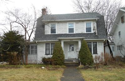 Ravenna Single Family Home For Sale: 241 Lawrence St