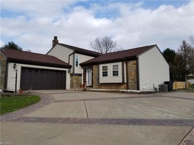 Marietta Single Family Home For Sale: 103 Brandy Dr