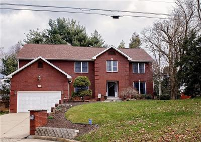 Vienna Single Family Home For Sale: 803 54th St