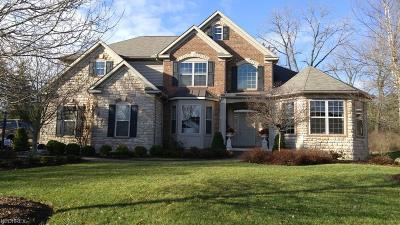 Broadview Heights Single Family Home For Sale: 8088 Majestic Oaks Trail