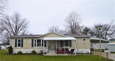 Olmsted Township Single Family Home For Sale: 13 Van Ess