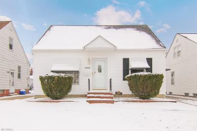 Maple Heights Single Family Home For Sale: 14500 Tabor Ave