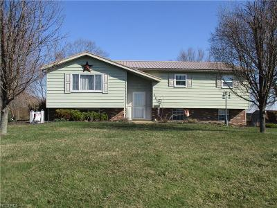 Zanesville Single Family Home For Sale: 3955 Clay Pike