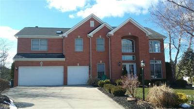 Strongsville Single Family Home For Sale: 20780 Wakefield Cir
