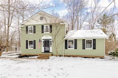 Chagrin Falls Single Family Home For Sale: 17550 Merry Oaks Trl