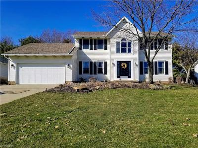 Wadsworth Single Family Home For Sale: 744 Lawrence Dr
