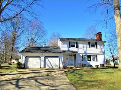 Newton Falls Single Family Home For Sale: 60 West Eighth St