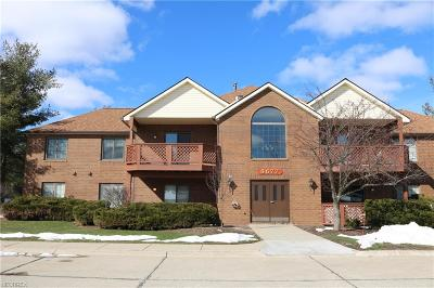 Brecksville, Broadview Heights Condo/Townhouse For Sale: 8677 Scenicview Dr #A205