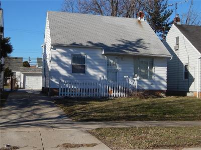 Maple Heights Single Family Home For Sale: 19613 Beverly Ave