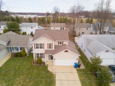 North Ridgeville Single Family Home For Sale: 33916 Lincoln Ave