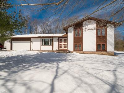 Chardon Single Family Home For Sale: 12180 Old State Rd