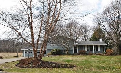 Copley Single Family Home For Sale: 940 South Hametown Rd