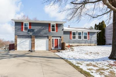 Summit County Single Family Home For Sale: 4463 Foresthill Rd