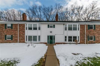 Brecksville, Broadview Heights Condo/Townhouse For Sale: 7010 Carriage Hill Dr #201