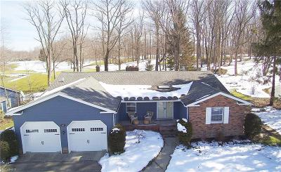 Geauga County Single Family Home For Sale: 8681 Lake Forest Trl