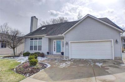 Summit County Single Family Home For Sale: 132 Hunter Pky