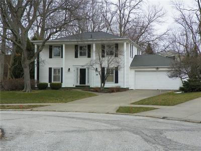 Rocky River Single Family Home For Sale: 1011 Chatham Pl