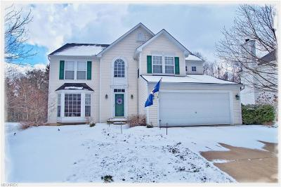Medina Single Family Home For Sale: 6071 Triple Crown Dr