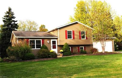 Summit County Single Family Home For Sale: 2487 Norton Rd