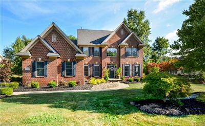 Avon Lake OH Single Family Home For Sale: $575,000