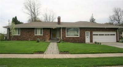 Youngstown Single Family Home For Sale: 1161 Wilshire Dr