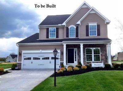 North Ridgeville Single Family Home For Sale: 183 Thornbury St