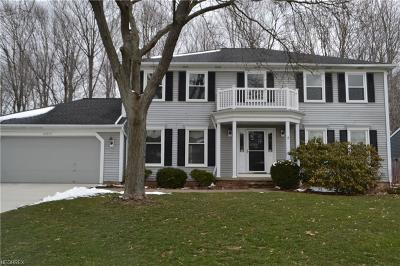 Solon Single Family Home For Sale: 34875 Ada Dr South