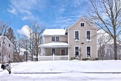Chagrin Falls Single Family Home For Sale: 269 North St