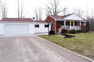 Summit County Single Family Home For Sale: 3823 Broadview Rd
