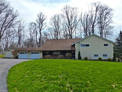 Willoughby Hills Single Family Home For Sale: 35800 Maplegrove Rd