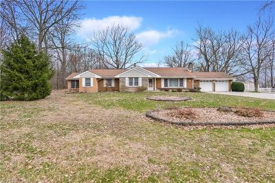 Canfield Single Family Home For Sale: 11671 Green Beaver Rd