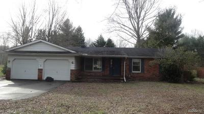 Madison Single Family Home For Sale: 7422 Chapel Rd