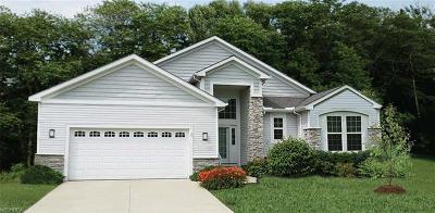 Orange Single Family Home For Sale: 110 Orange Lake Dr
