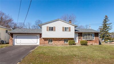 Mentor-On-The-Lake Single Family Home For Sale: 5800 Lake Rd