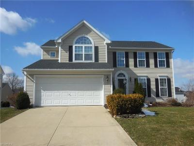 Summit County Single Family Home For Sale: 134 Creekledge Ln