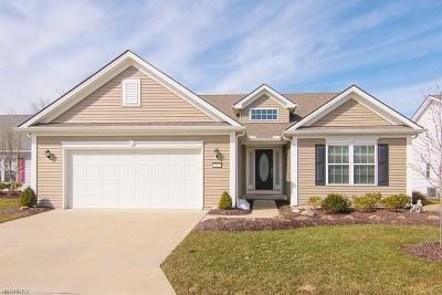 Brunswick Single Family Home For Sale: 484 Water Pointe Lane