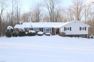 Geauga County Single Family Home For Sale: 15264 Dale Rd