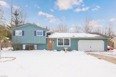 North Ridgeville Single Family Home For Sale: 34837 Highland Dr