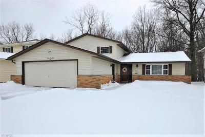 South Euclid Single Family Home For Sale: 4560 Whitehall Dr