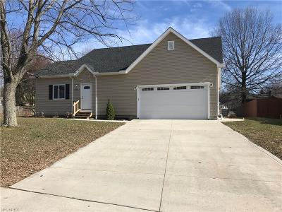 Wadsworth Single Family Home For Sale: 463 Wolf Ave