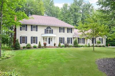 Chagrin Falls Single Family Home For Sale: 103 Foxhall Dr
