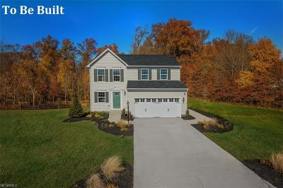 Twinsburg Single Family Home For Sale: 3600 Shady Timber Dr