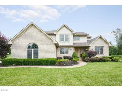 Copley Single Family Home For Sale: 505 Sara Ln