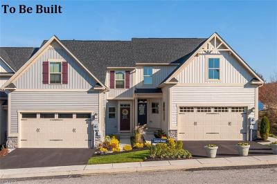 Summit County Condo/Townhouse For Sale: 14a Old Mill Dr
