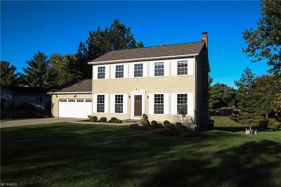 Mentor Single Family Home For Sale: 9251 Wyant Dr