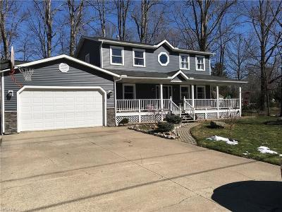Summit County Single Family Home For Sale: 10529 Maryland St