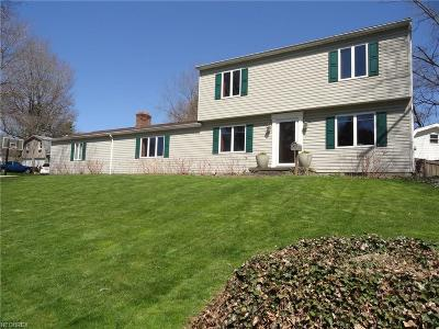 Summit County Single Family Home For Sale: 3345 Lakeview Blvd