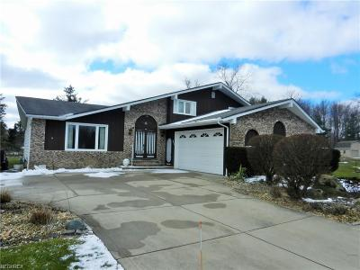 Hinckley Single Family Home For Sale: 2248 Willow Brook Ln