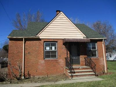 Euclid Single Family Home For Sale: 24381 Mavec